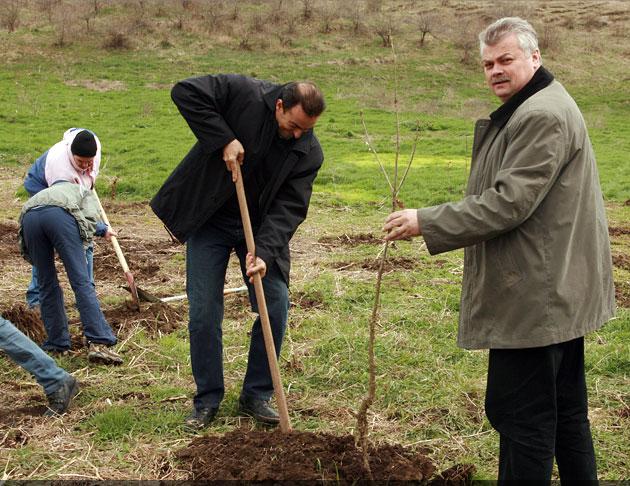 Peste 30.000 de arbuşti plantaţi în Pădurea Tineretului