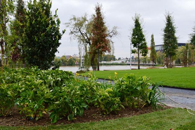 Peste 18.000 de arbuști ornamentali vor înfrumuseța spațiul verde din proximitatea Lacului de Vest